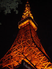Tokyo Tower at Night @http://agileopedia.com