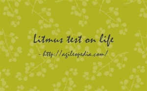 Litmus test on life @http://agileopedia.com